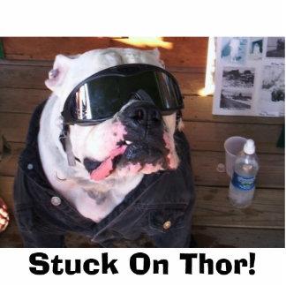 Stuck On Thor! Standing Photo Sculpture