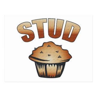 Stud Muffin Wash Design Postcard