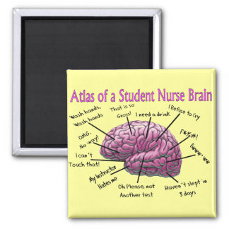 Student Nurse Gifts Magnet