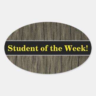 Student Praise + Rustic Faux Wood Look Pattern Oval Sticker