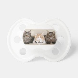 """Studio Photo - 3 Cats Saying """"Cheese"""" Dummy"""