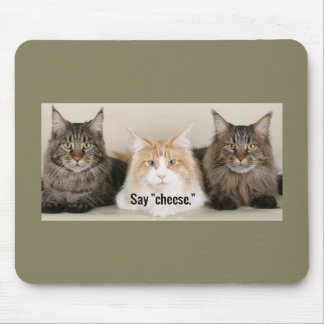 "Studio Photo - 3 Cats Saying ""Cheese"" Mouse Pad"