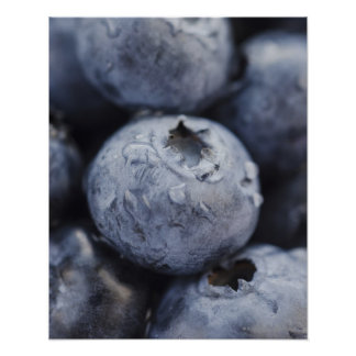 Studio shot of blueberries 2 poster