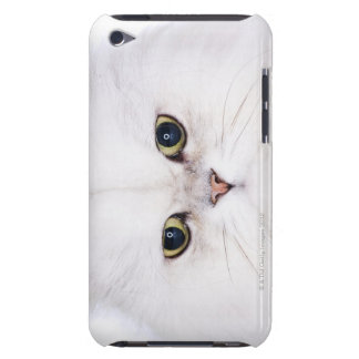 Studio shot of white Persian cat Barely There iPod Cases