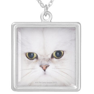 Studio shot of white Persian cat Silver Plated Necklace
