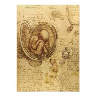 Study of baby fetus by Leonardo da Vinci Announcement