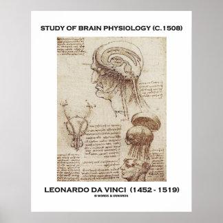 Study Of Brain Physiology Leonardo da Vinci Poster