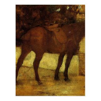 Study of Horses by Edgar Degas Postcard