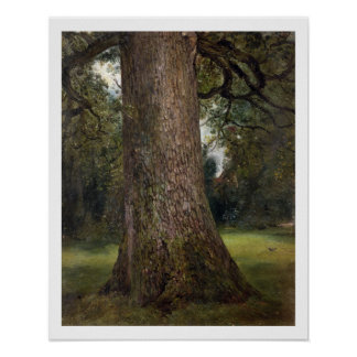 Study of the Trunk of an Elm Tree, c.1821 (oil on Poster