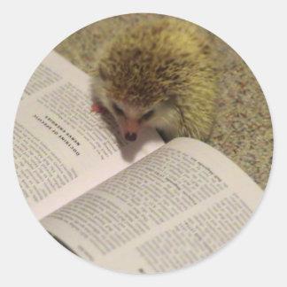 Studying Hedgehog Sticker