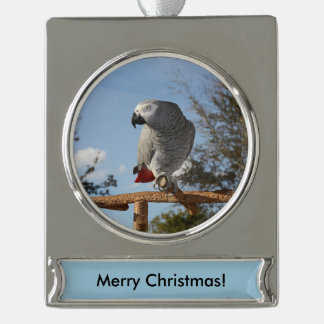 Stunning African Grey Parrot Silver Plated Banner Ornament