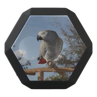 Stunning African Grey Parrot Black Boombot Rex Bluetooth Speaker