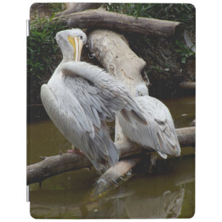Stunning Bird Image iPad Cover