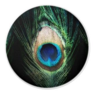 Stunning Black Peacock Ceramic Knob
