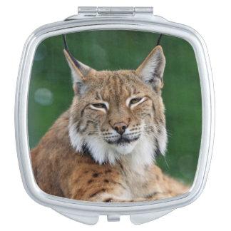 Stunning bobcat portrait makeup mirror