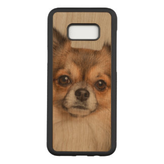 Stunning chihuahua portrait carved samsung galaxy s8+ case