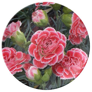 Stunning Dianthus Plate