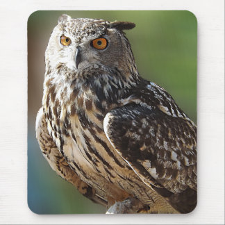 Stunning Eagle Owl with Orange Eyes Mouse Pad