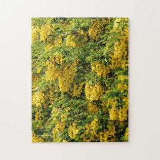 Stunning Golden Chain / Laburnum Tree Jigsaw Puzzle