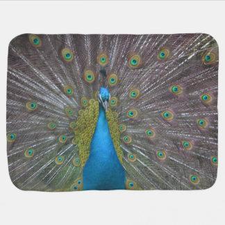 Stunning Peacock Buggy Blanket
