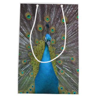Stunning Peacock Medium Gift Bag