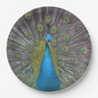 Stunning Peacock Paper Plate