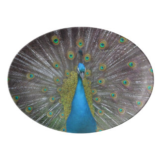 Stunning Peacock Porcelain Serving Platter