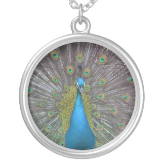 Stunning Peacock Silver Plated Necklace