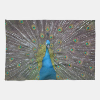 Stunning Peacock Tea Towel