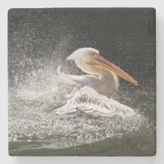 Stunning pelican in water stone coaster