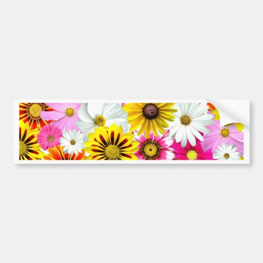Stunning pink yellow flowers pattern accessories bumper stickers