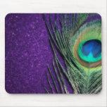 Stunning Purple Peacock