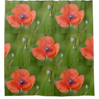 Stunning Red Poppy Shower Curtain