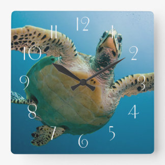 Stunning sea tortoise square wall clock