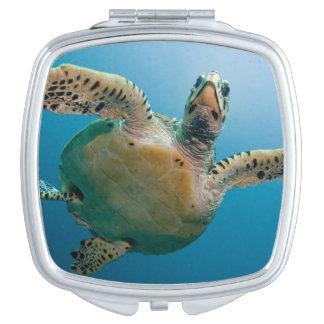 Stunning sea tortoise vanity mirror