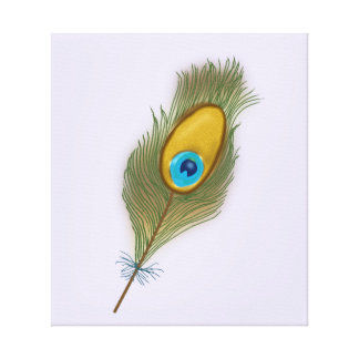 Stunning Single Colorful Peacock Feather Canvas Print