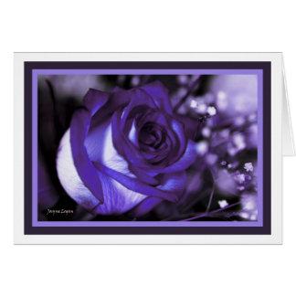 stunning Violet Rose! Blank Card (Template)