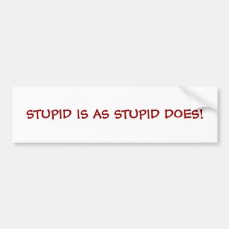 STUPID IS AS STUPID DOES! BUMPER STICKER