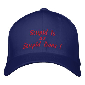 Stupid Is, as, Stupid Does ! Embroidered Hat