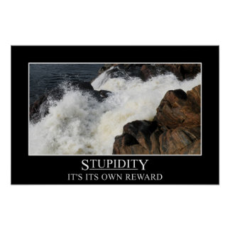 Stupidity is its own reward (S) Posters