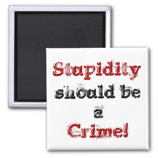 Stupidity, should be a, Crime! magnet