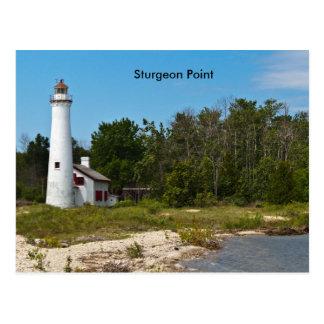 Sturgeon Point Postcard