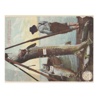 Sturgeon & Salmon Catch Postcard