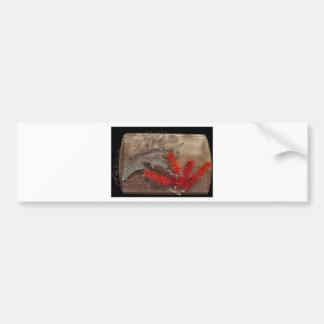 Sturgeons in Net Bumper Sticker
