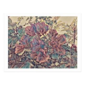 Stylised Bougainvillea Postcard