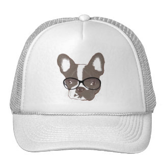 Stylish french bulldog hats