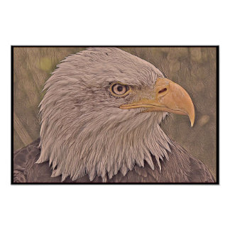 Stylized Bald Eagle Series - Number 9 Poster