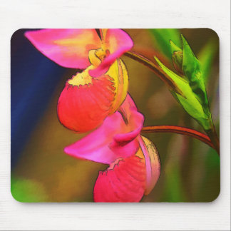 Stylized Phragmipedium Orchid Flower Duo Mouse Pad