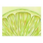"""""""Sublime"""" macro lime slice postcard"""