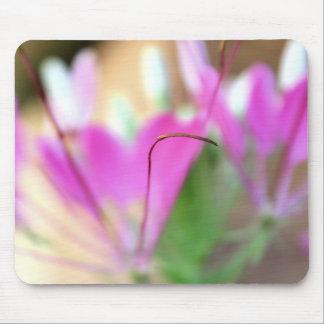 Sublime - Spiderflower - mousepad